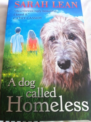 Book Review A Dog Called Homeless By Sarah Lean Daily Waffle
