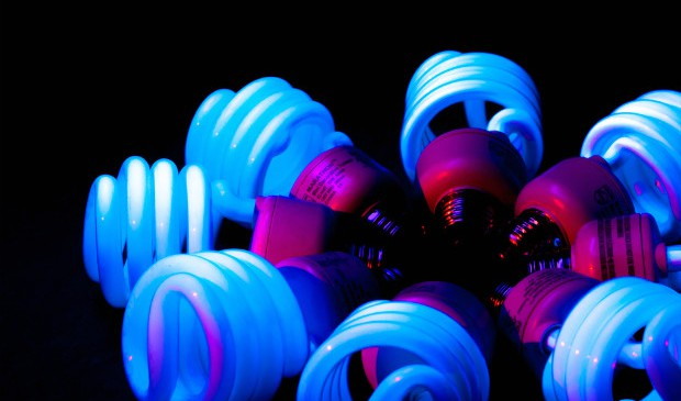 cfl-bulbs