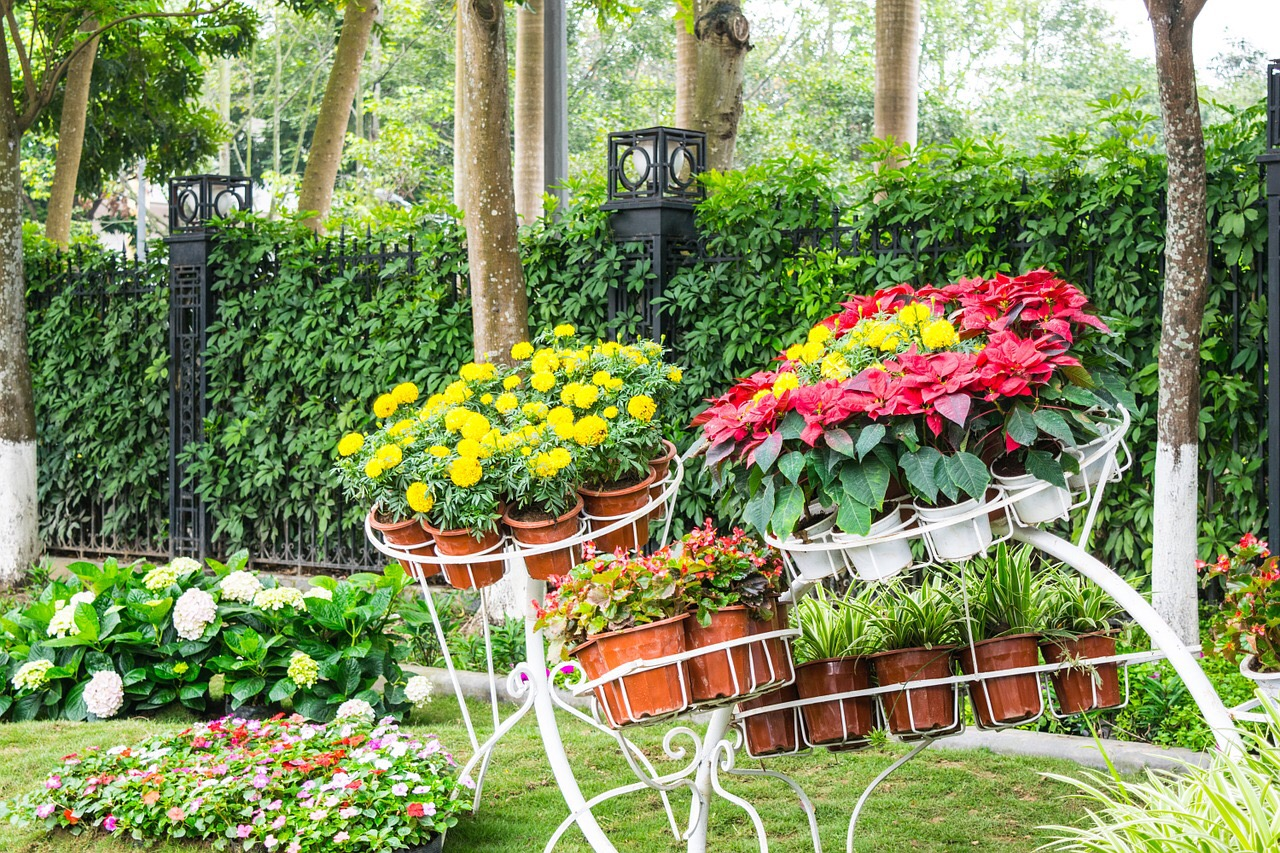6 tips for decorating your garden – DAILY WAFFLE